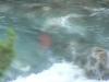 alpine-paddling-2011-10