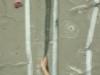 dublin-intervarsities-033